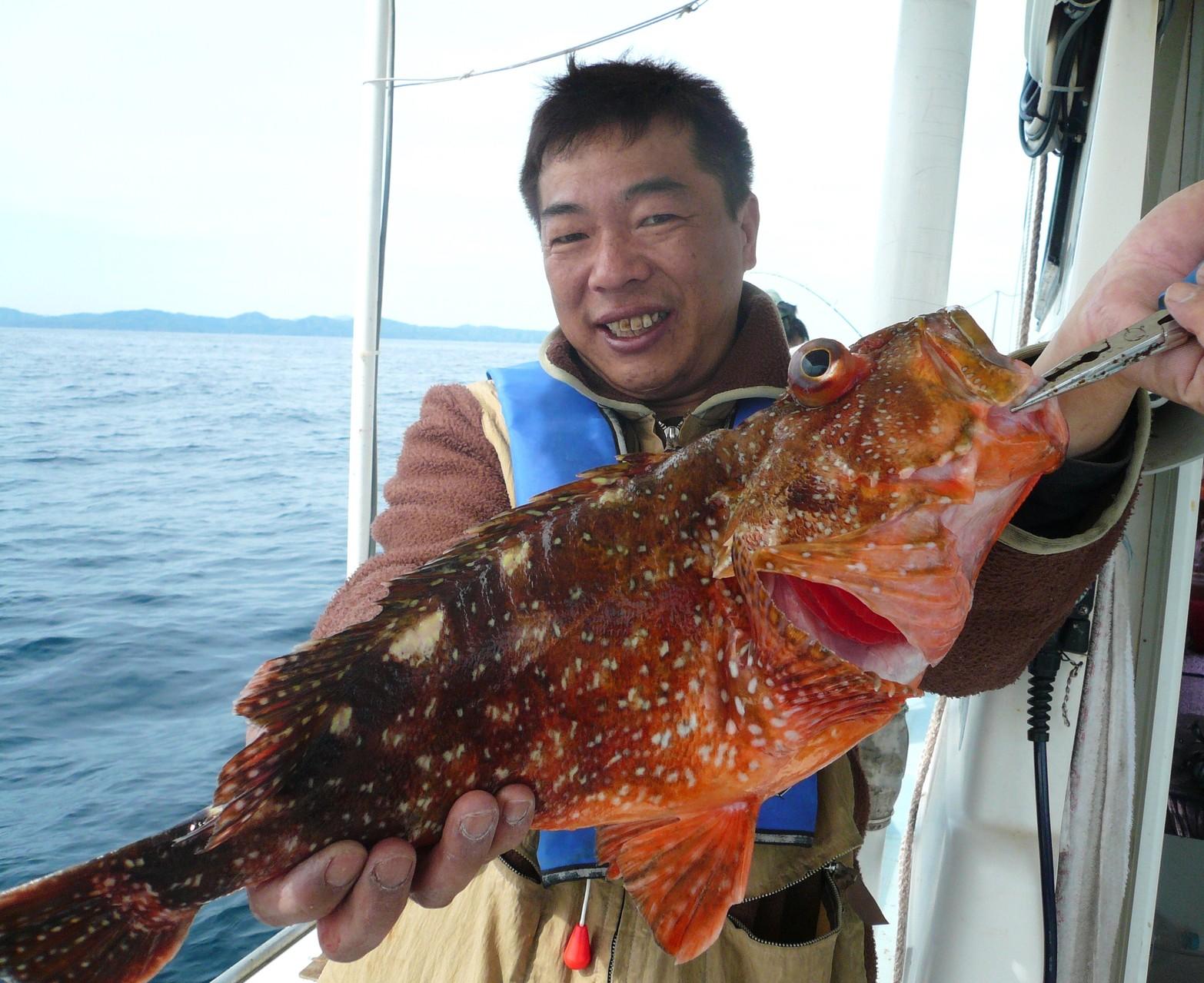 5月4日 三界のポイント有吉さん 鯛ラバー 鯛ラバーで ウッカリカサゴ1.8kg
