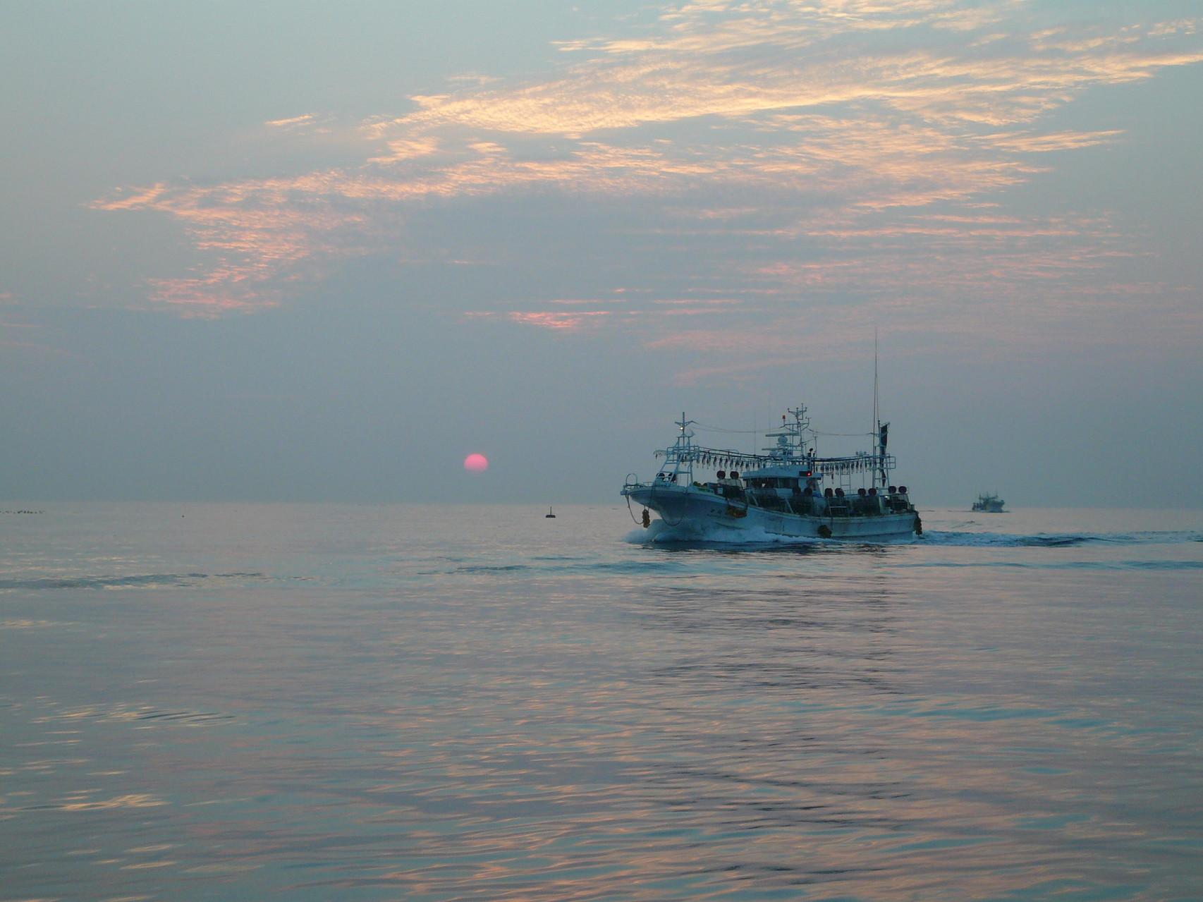 7月15日 日の出と共にイカ釣り船 帰港 本船出船