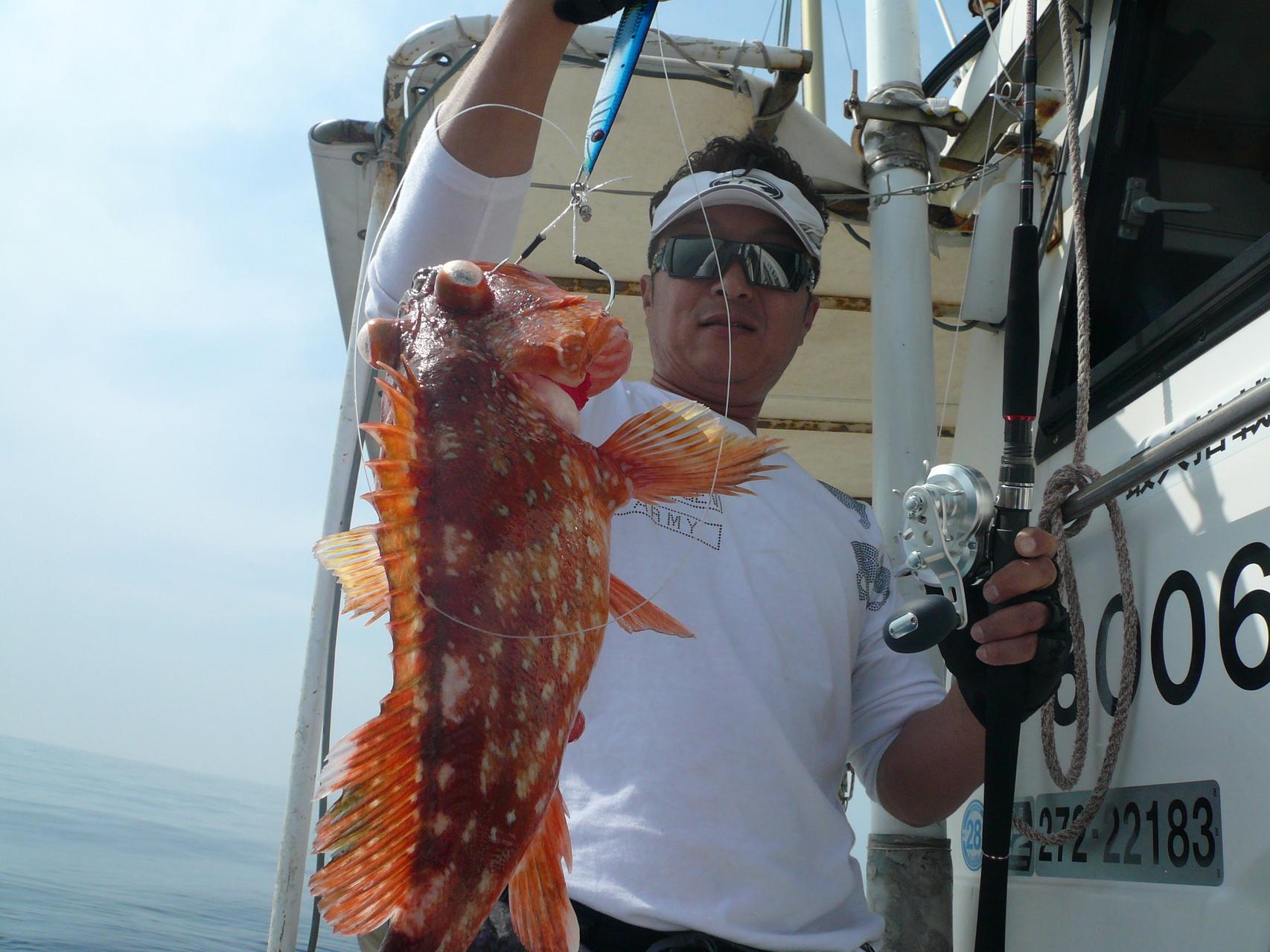 潮の動き悪いと ウッカリカサゴ 2kg弱