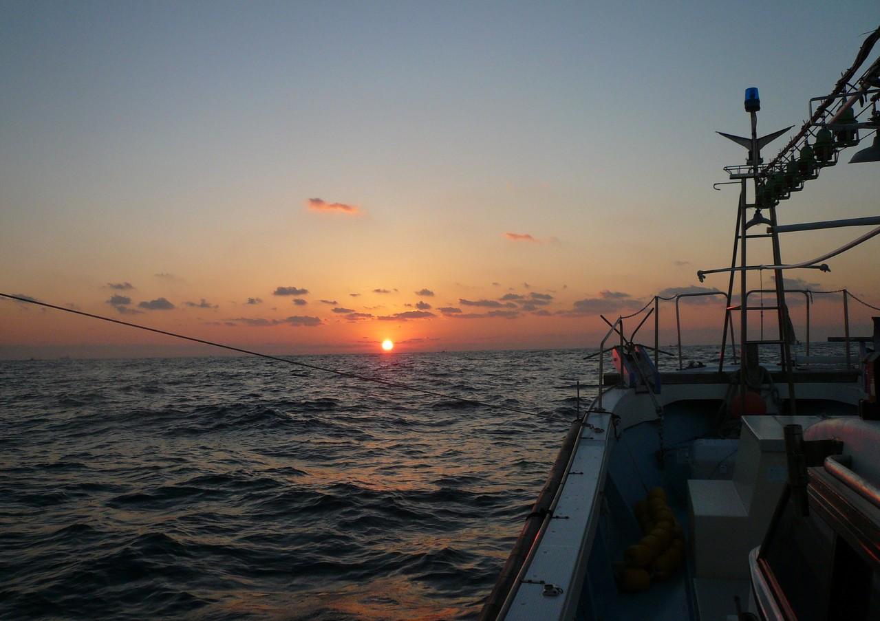 1月11日 良い釣り日より サワラ4匹 小ぶり5.75kg ヒラゴ20匹余り ワラサ6匹
