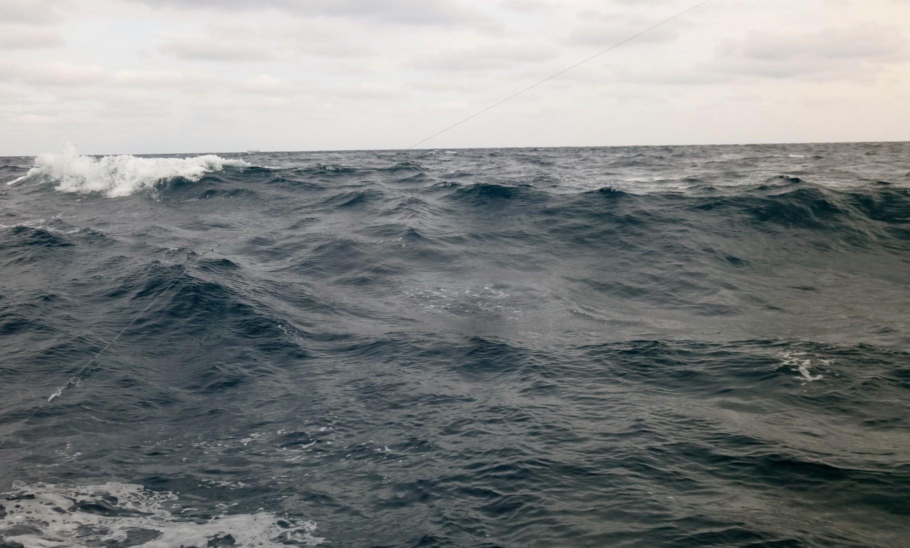 12月14日潮が変わって波が高く早めに帰港へ