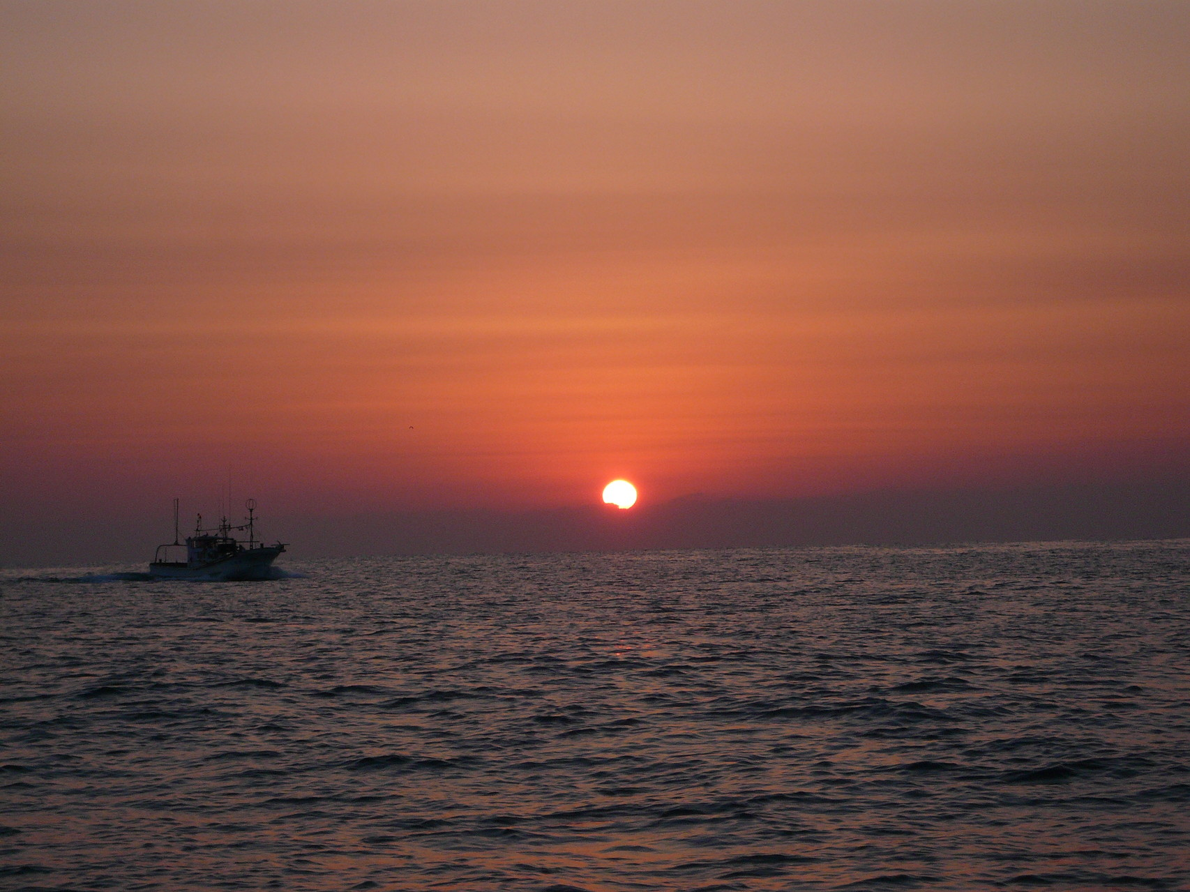 3月11日 サザエ網(たてあみ)から帰港の船 本船今から出船へ