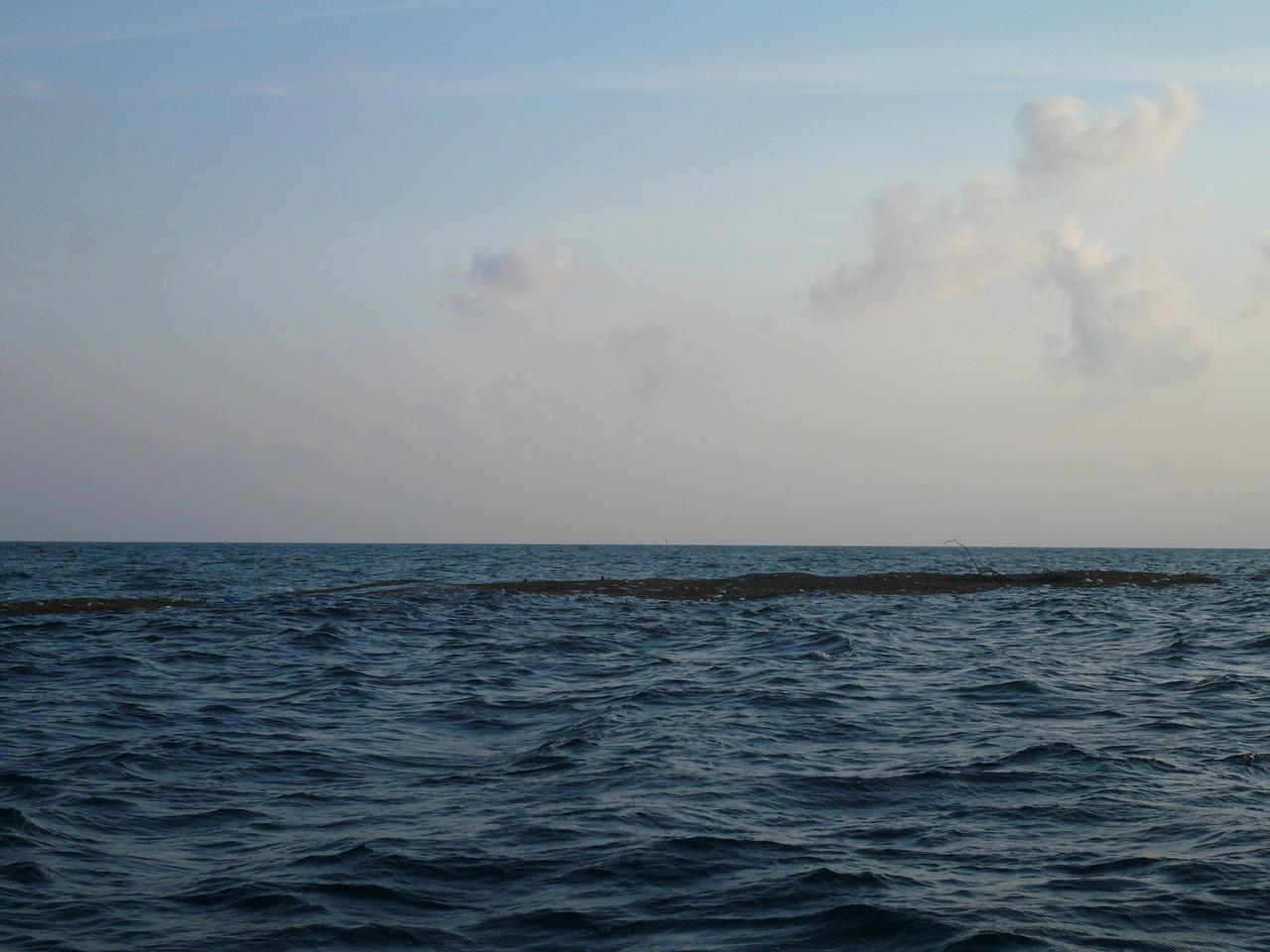 台風15号被害 また16号で被害 大きな材木からゴミまで 海岸に漂着間違い無し