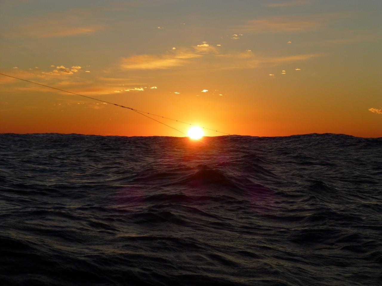 1月7日今日は漁師さんに混じってサワラ狙い
