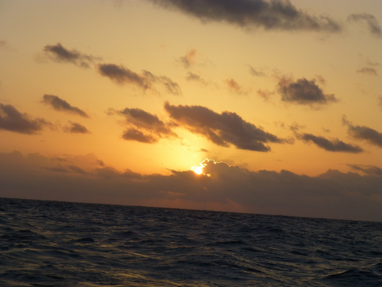 9月27日 品木島 東側一重だし 日の出