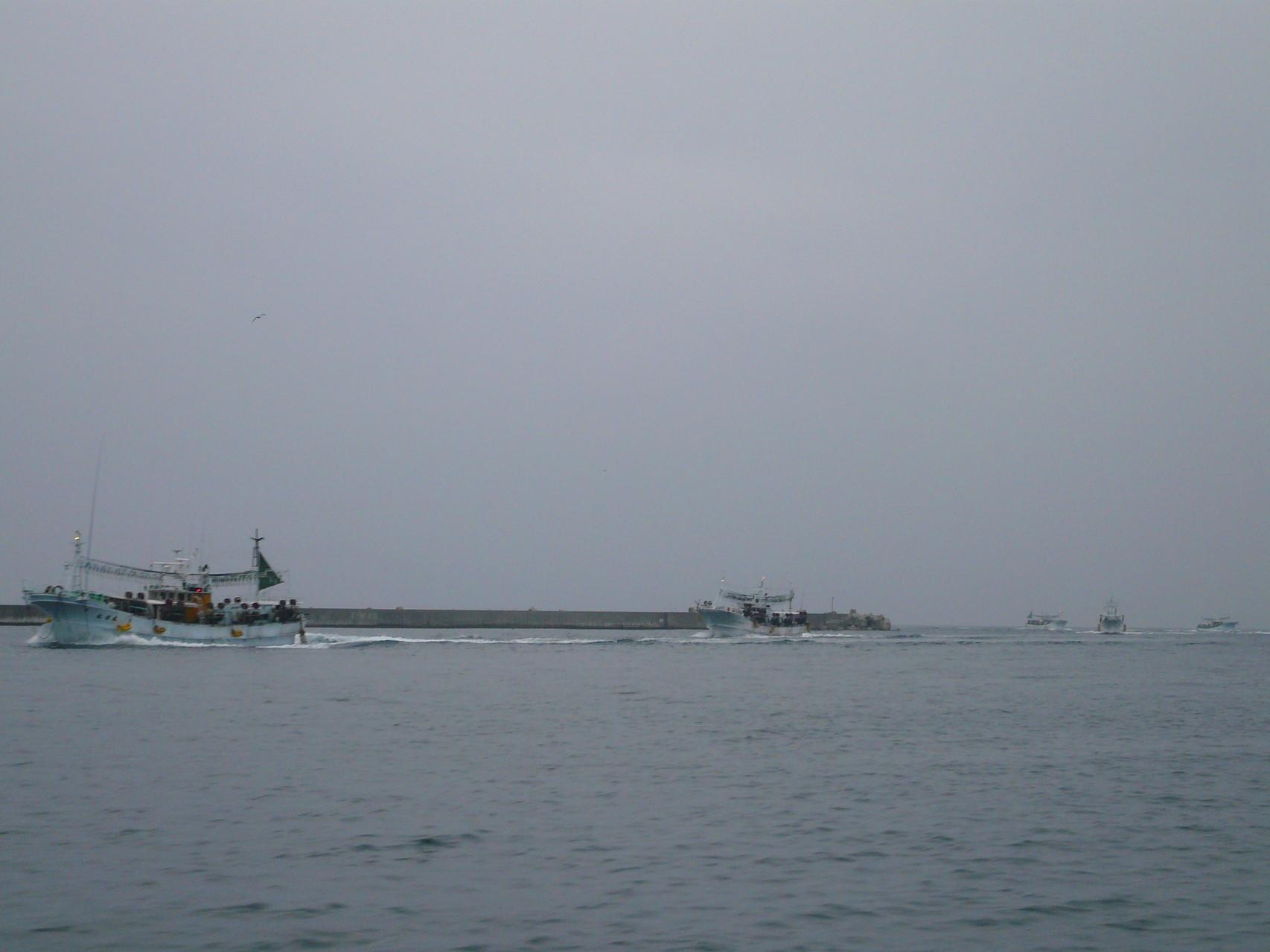 6月7日 イカ釣り船帰港中 10隻以上イカが釣れ出したんです。