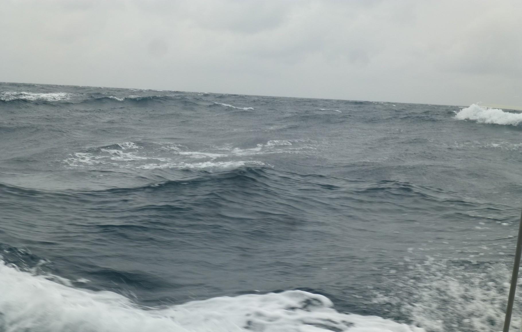 12月10日 段々波が高くなり早めに帰港へ