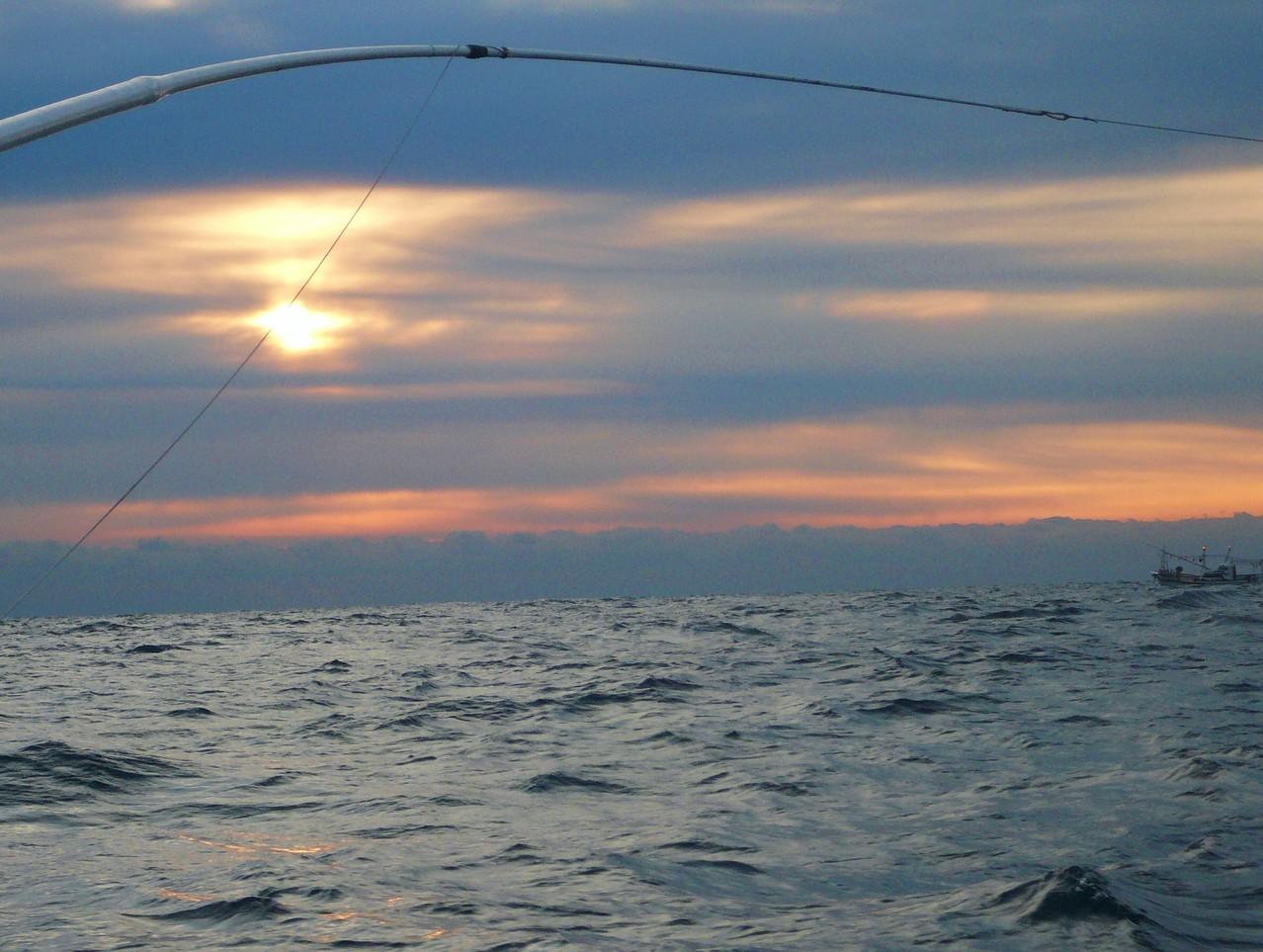 1月5日初釣り サワラの当たり