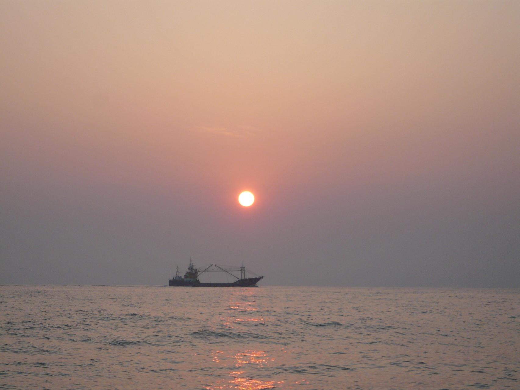 5月22日 大型巻き網船 帰港中