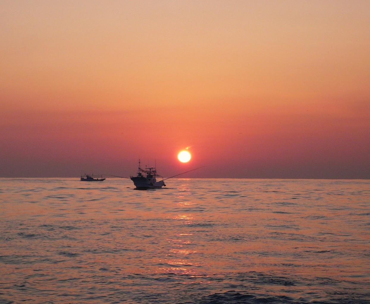 1月29日 陽が昇ります サワラ 釣り トローリングです