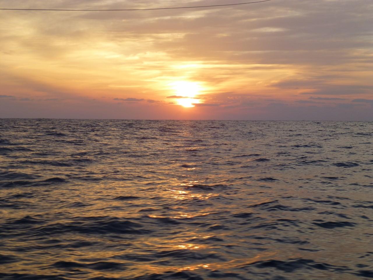 今日の沖の瀬のポイントです