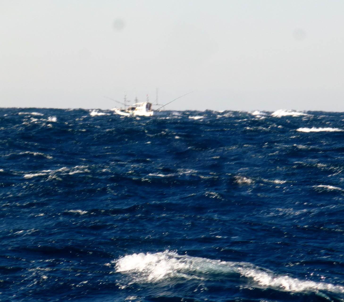 12月18日 風強し 波高し
