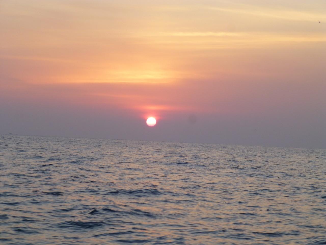 1月5日本船 初釣り サワラ狙い