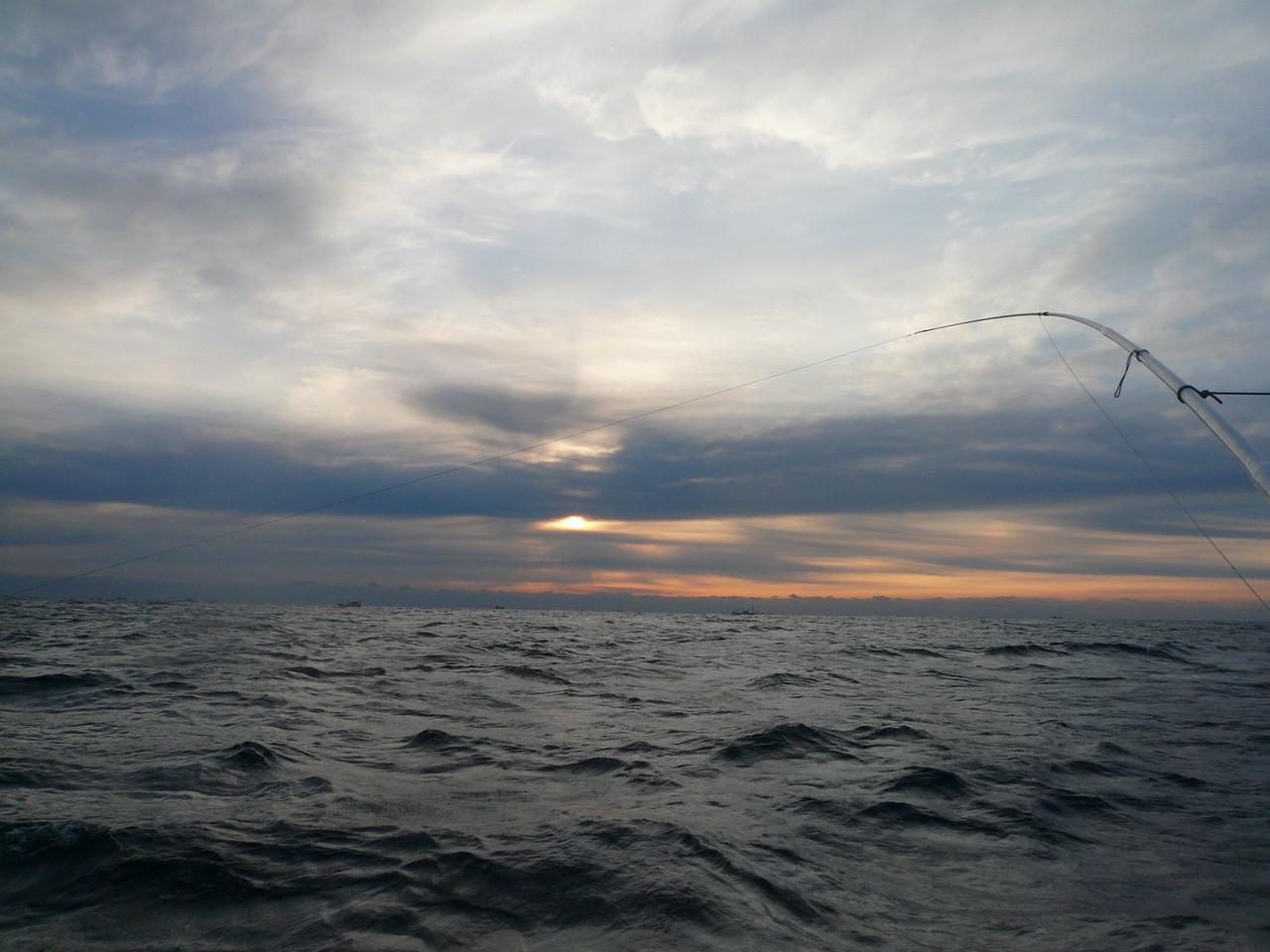 1月5日初釣り 三界 サワラ2匹 ヒラス3匹 ヒラゴ3匹