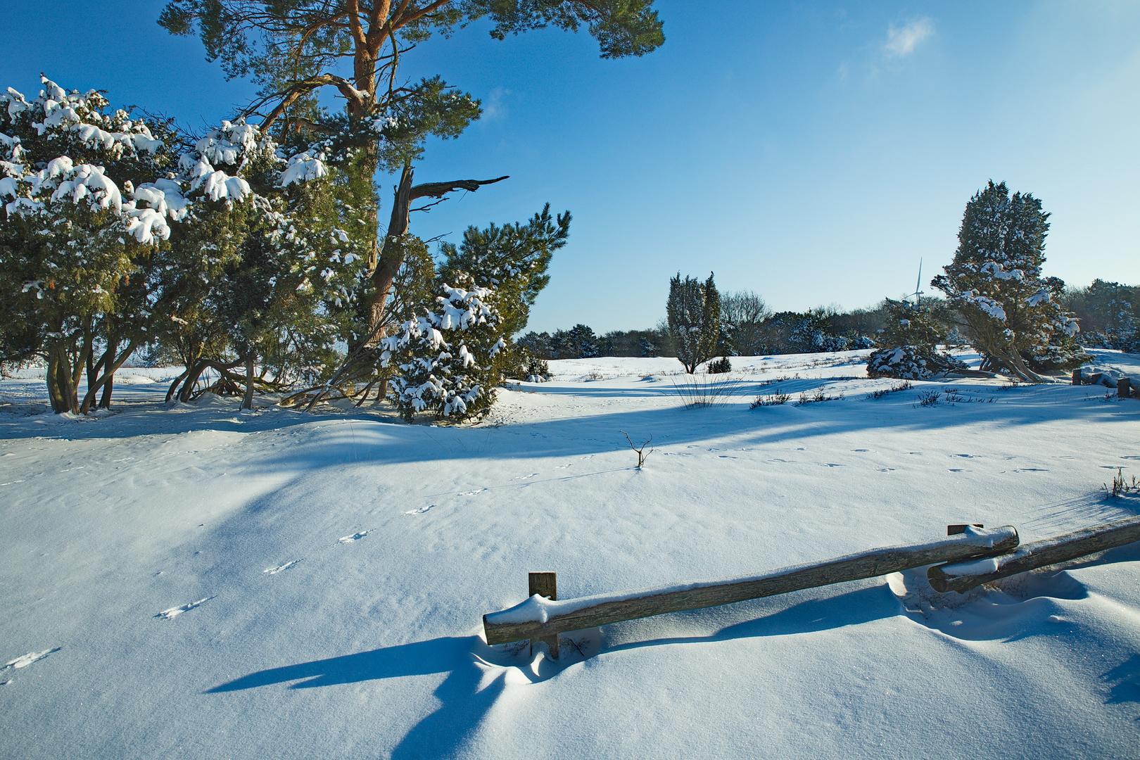 Schneelandschaft Februar 2021.