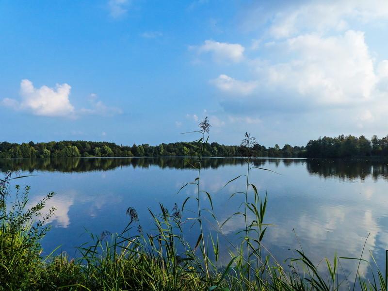 Sommer am Torfvennteich in Merfeld