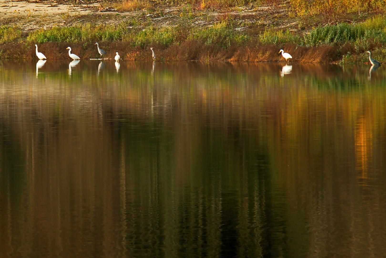 Der Hullerner See im Herbst 2020.