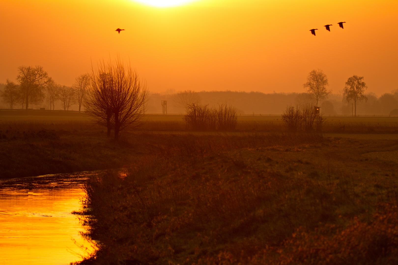 Sonnenaufgang in Merfeld, Januar 2020.