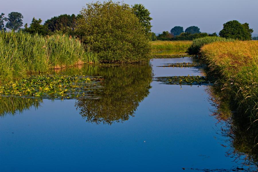 Wasserlauf in Merfeld im Sommer 2018.
