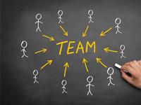Weiterbildungen - Team, Leitung und Oragnisation