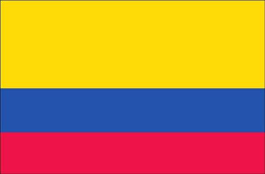 FDKM CENTER IN PERU'