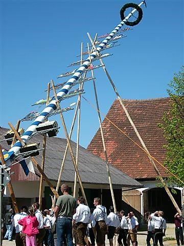 Der Maibaum wird nach der Walpurgisnacht am 1. Mai aufgestellt. In Bayern viellerorts ein Großereignis für Jung und Alt und Einheimische wie Besucher. Foto privat