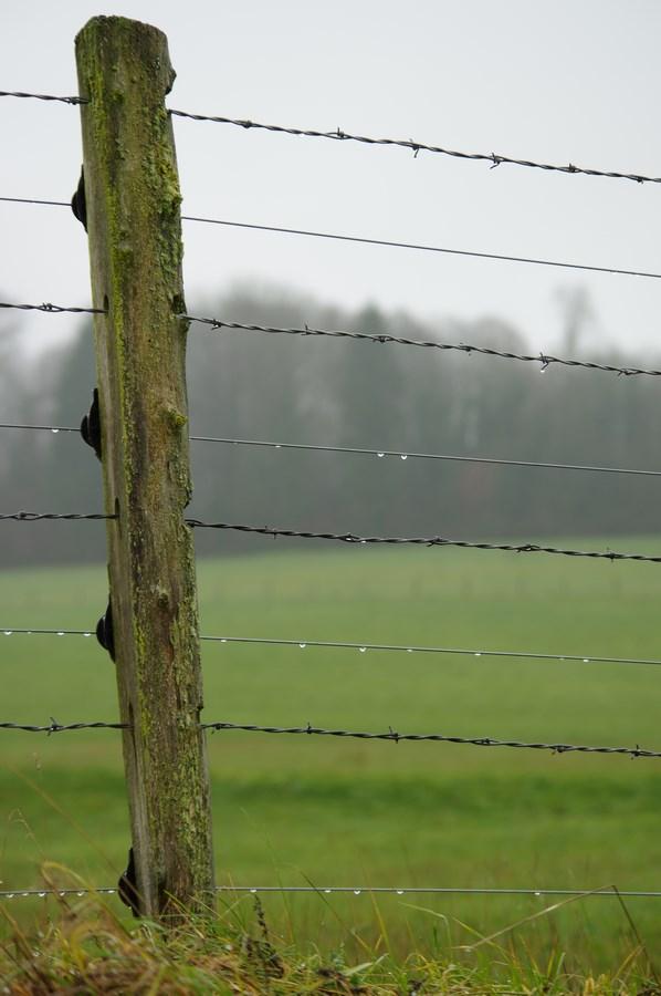 Renforcement d'une clôture barbelée existante avec plusieurs fils électriques