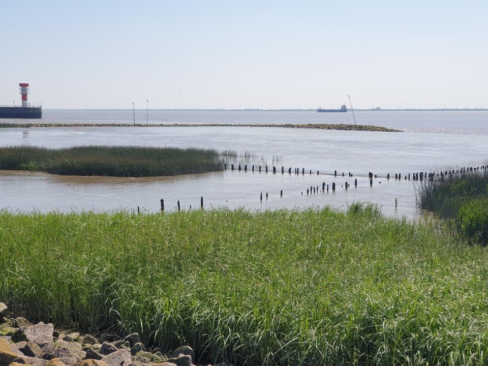 UNESCO Wattenmeer