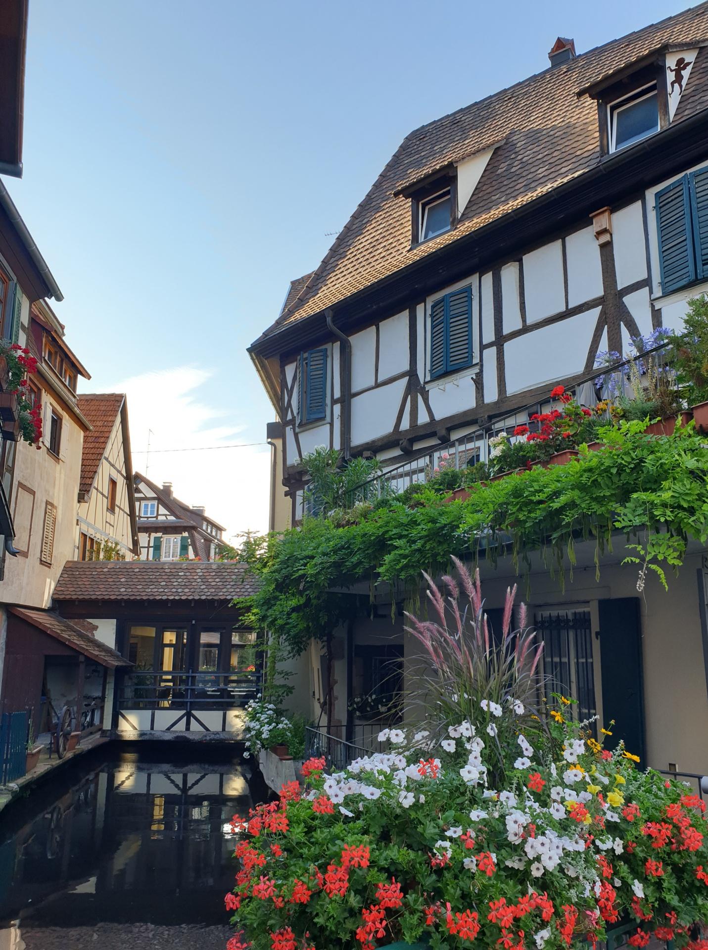 Wissembourg (F)