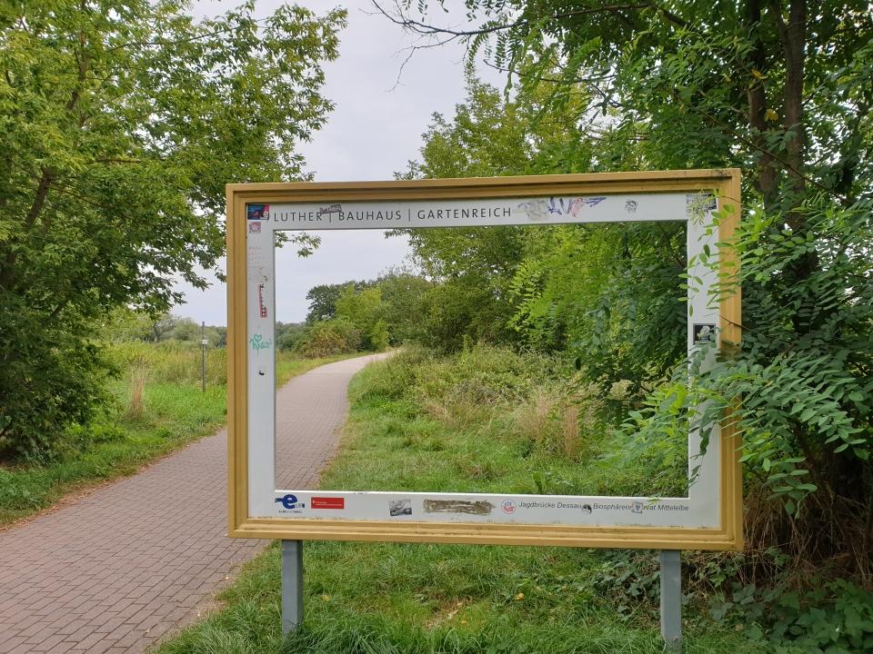 Radweg im Gartenreich