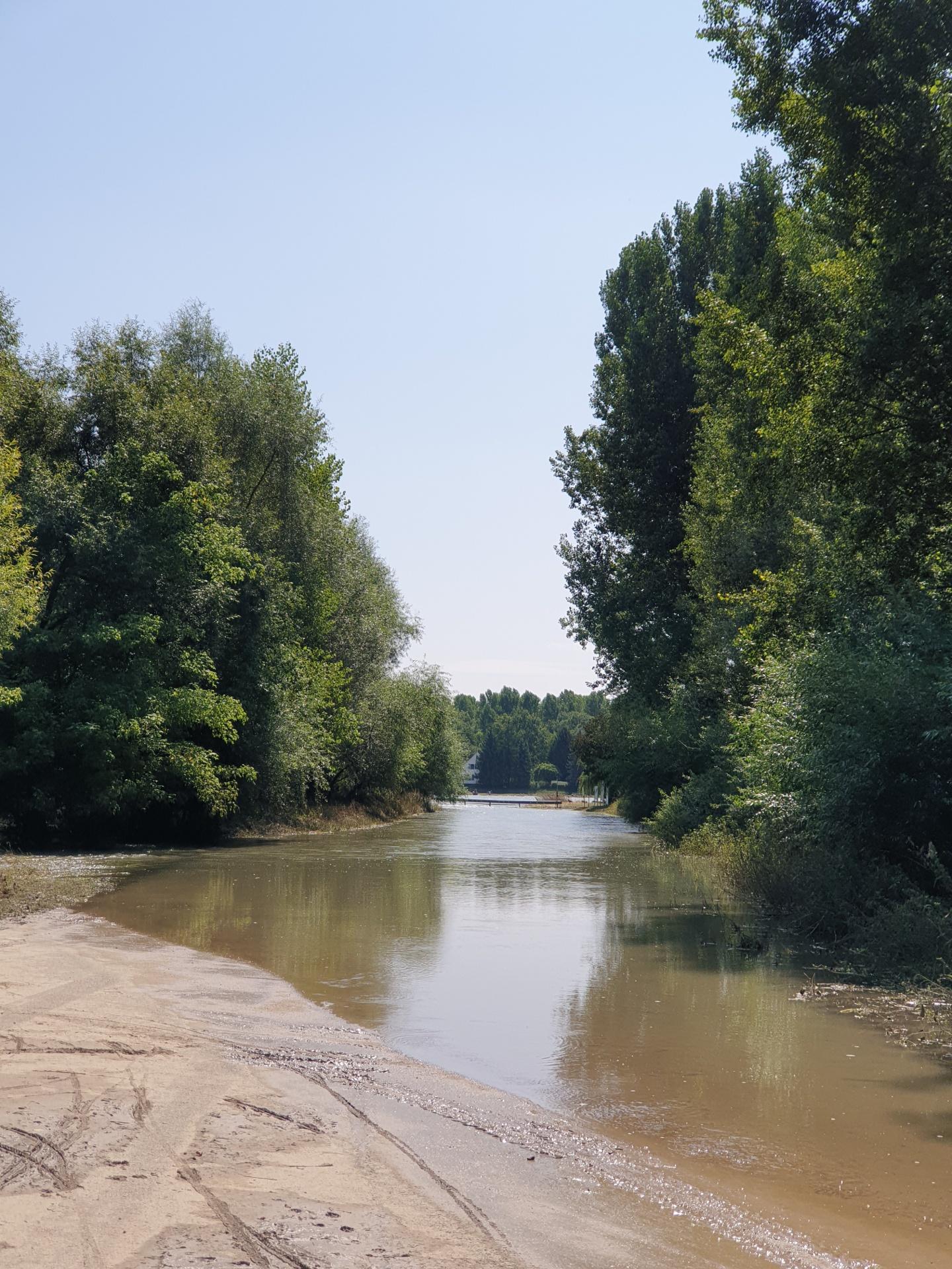 Hochwasser auf dem Weg zur Rheinfähre