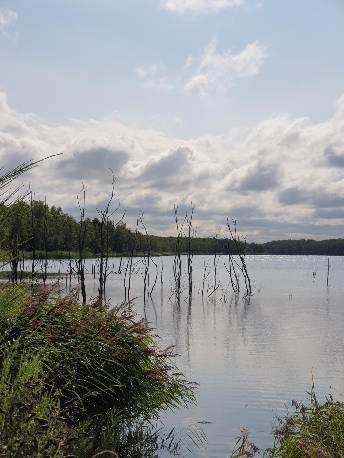 Holzweißiger Ostsee, gefluteter Abraumsee