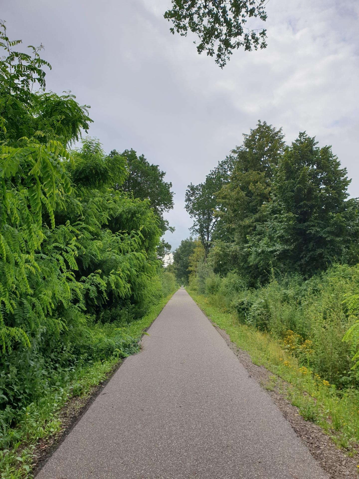 Ein Bild von Radweg, Glan-Radweg