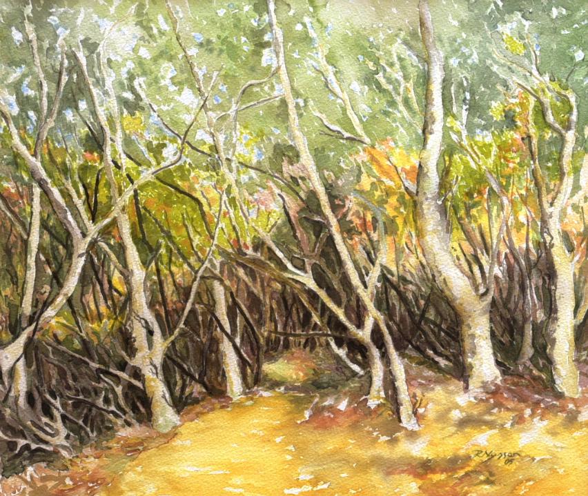 """Wald auf Teneriffa"", Aquarell, 42 * 36 cm / Forest in Tenerife"