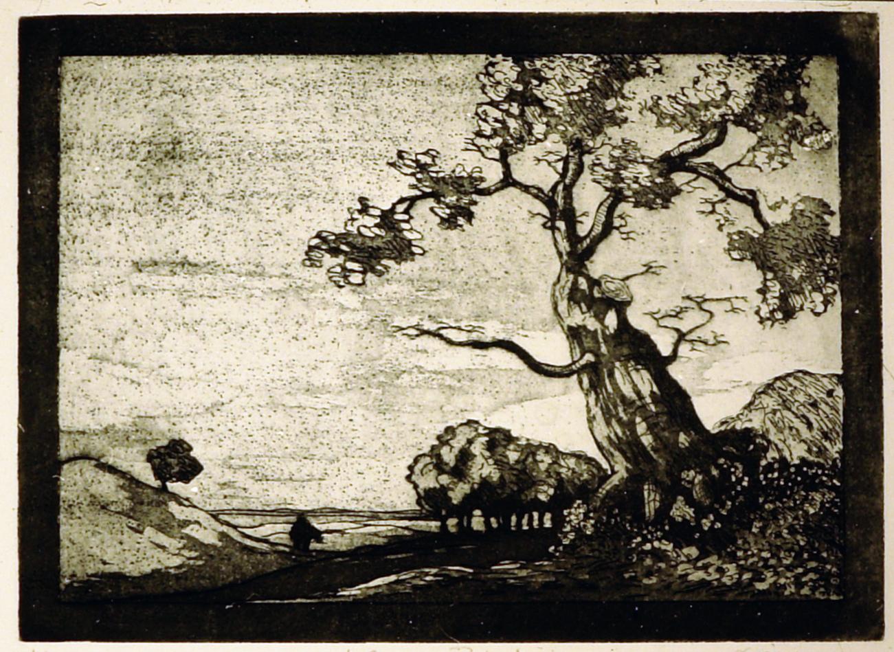 Printes motif