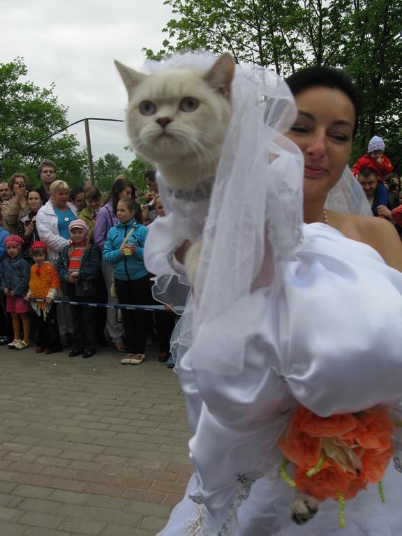 в заключение -  выход невесты