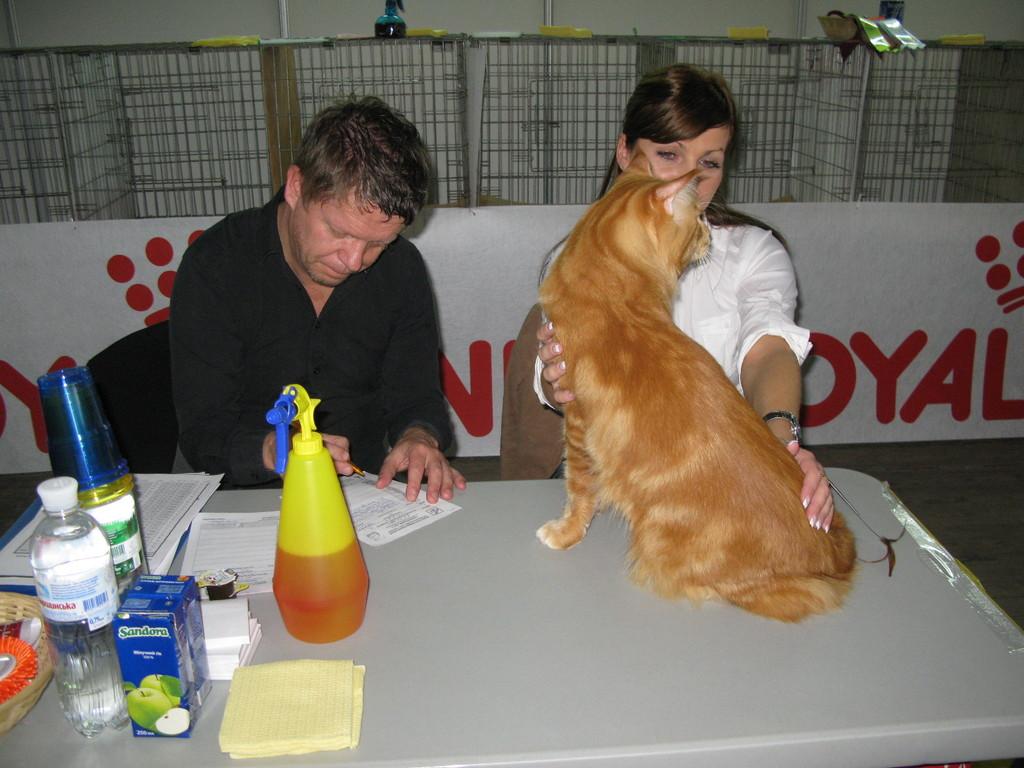 Honey Bear  на   столе   у   експерта   Veikko  Saarela - (президент финского ФИФе) и