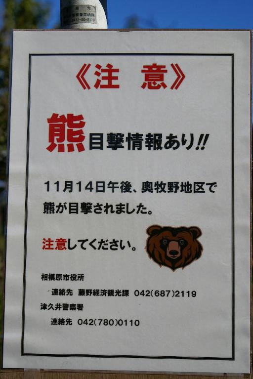 2010年夏、2011年秋と熊野目撃情報。山に餌が少ないんですね…