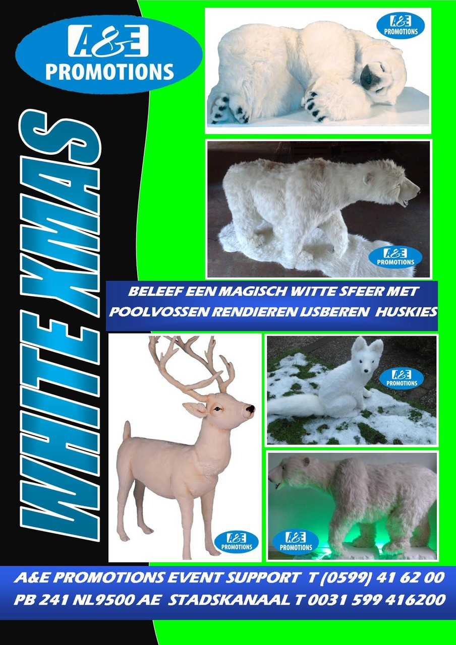 PAKKET WHITE XMASS SPECIALE PRIJS OP AANVRAAG - PAKET WHITE XMASS PREISE AUF ANFRAGE