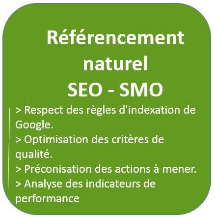 Audit et conseil en référencement naturel- SEO - SMO, optimisation des critéres de qualité, préconisations des actions à mener et indicateurs de performance