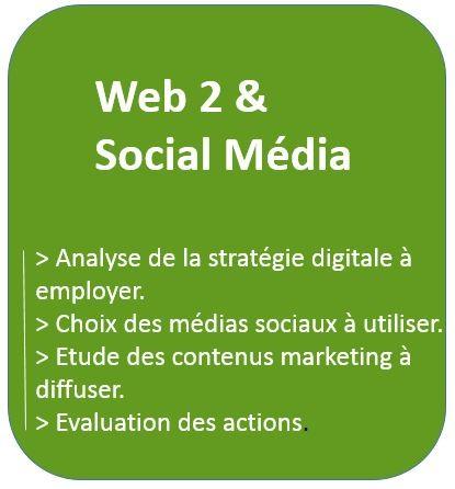 Audit et Conseil en web 2.0 et Social média avec analyse de la stratégie à employer, choix des médias sociaux et évaluation des actions