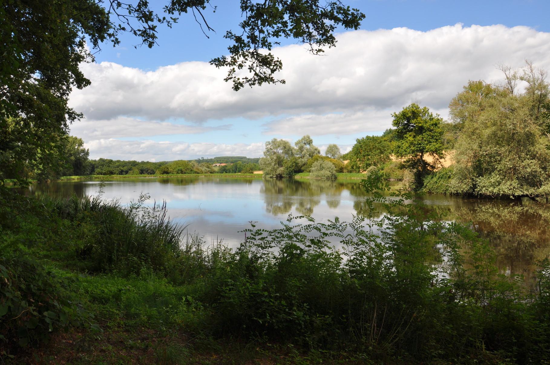 Pêche dans l'étang