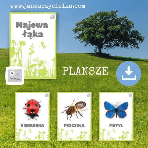 Majowa łąka (plansze)