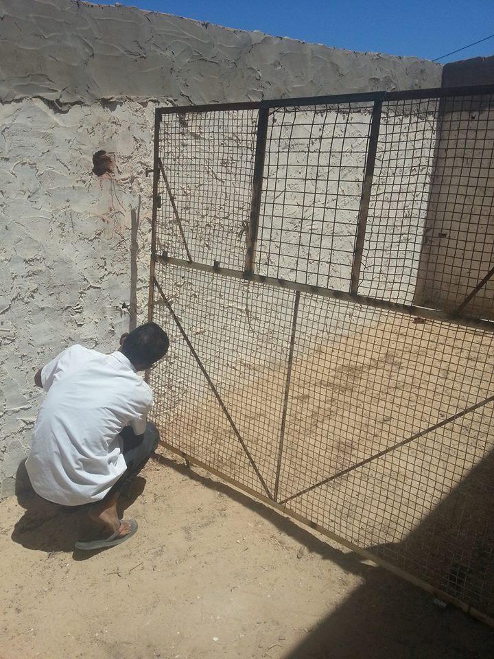 Im Juli 2017 Konnte Die Tierhilfe Djerba Mit Einer Spende Von 250 U20ac Durch  People4Strays Damit Beginnen, Ein Außengehege Zu Bauen.