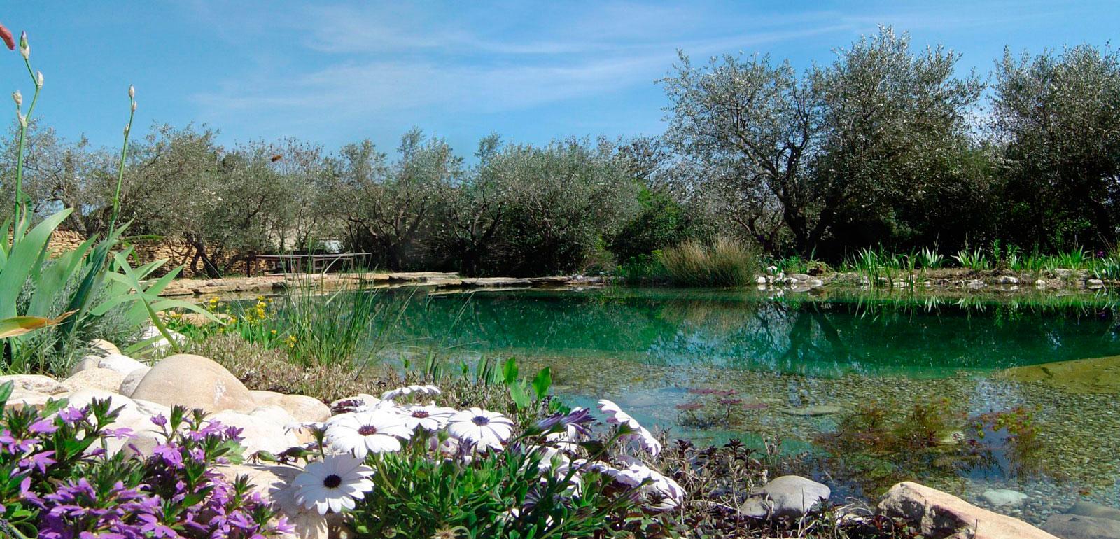 Las pozas de puebla de la sierra madrid bionova for Navafria piscinas naturales