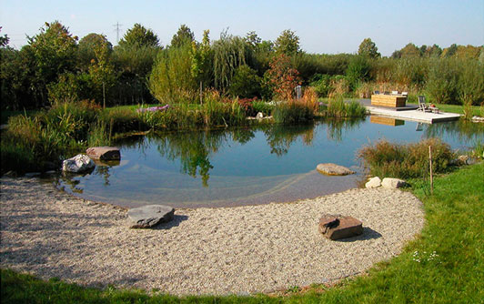 piscina naturalizada