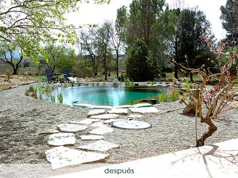Construir piscina ecológica - después
