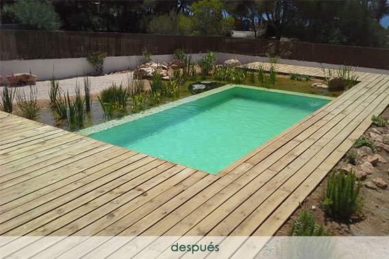 Construir piscina natural - después