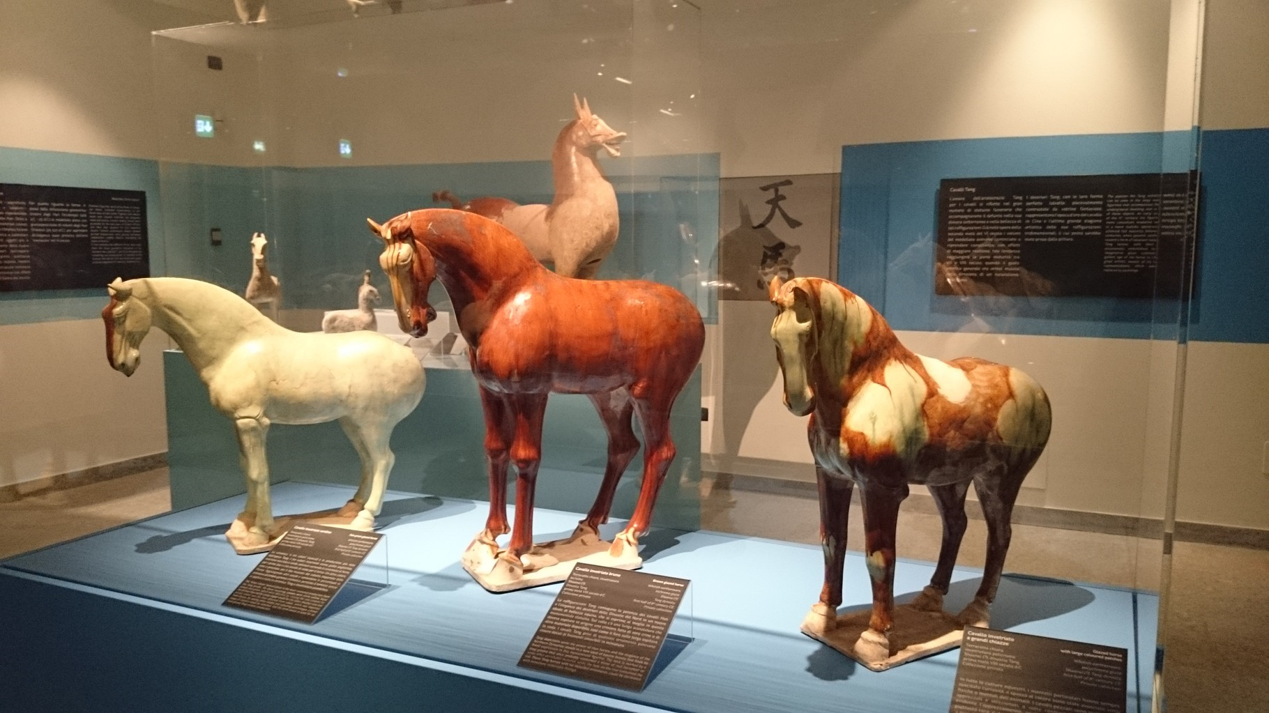 Torino, Museo d'Arte orientale. Cavalli dell'epoca Tang