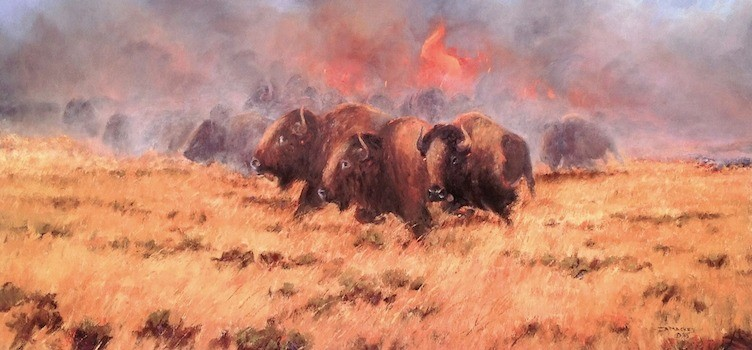 Red Buffalo - 16 x 28  -  unframed: $40  framed: $135